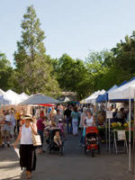 Foothill Farmer's Market in Auburn