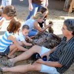 Bedrock Emu Work's pet Emu Winstin on display
